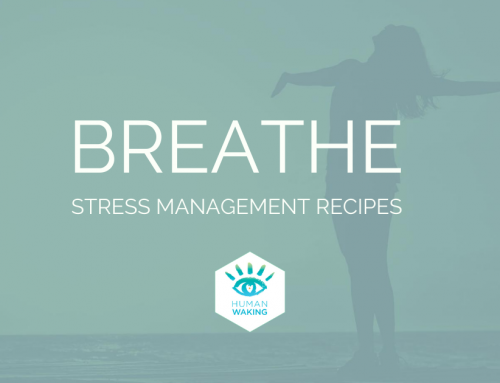 STRESS MANAGEMENT RECIPES